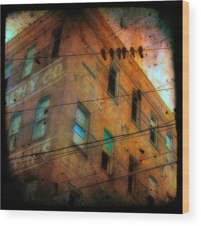 Abandoned Wood Print featuring the photograph Old Wires by Gothicrow Images