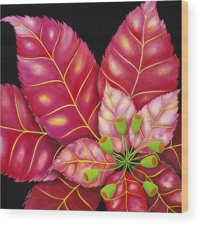 Acrylic Wood Print featuring the painting Poinsettia by Carol Sabo