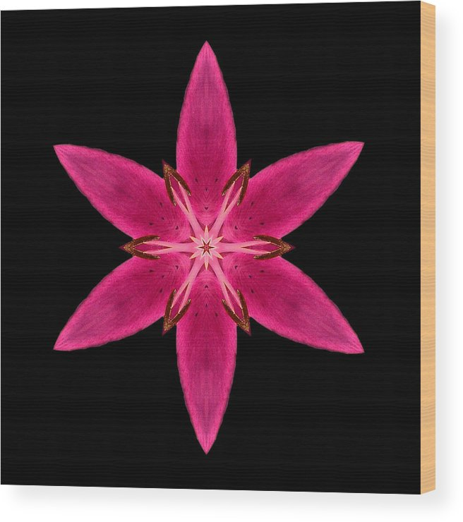 Flower Wood Print featuring the photograph Red Lily I Flower Mandala by David J Bookbinder
