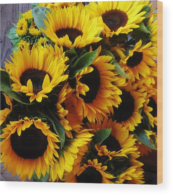 Sunflowers Wood Print featuring the photograph Sunflowers by Mimi Saint DAgneaux