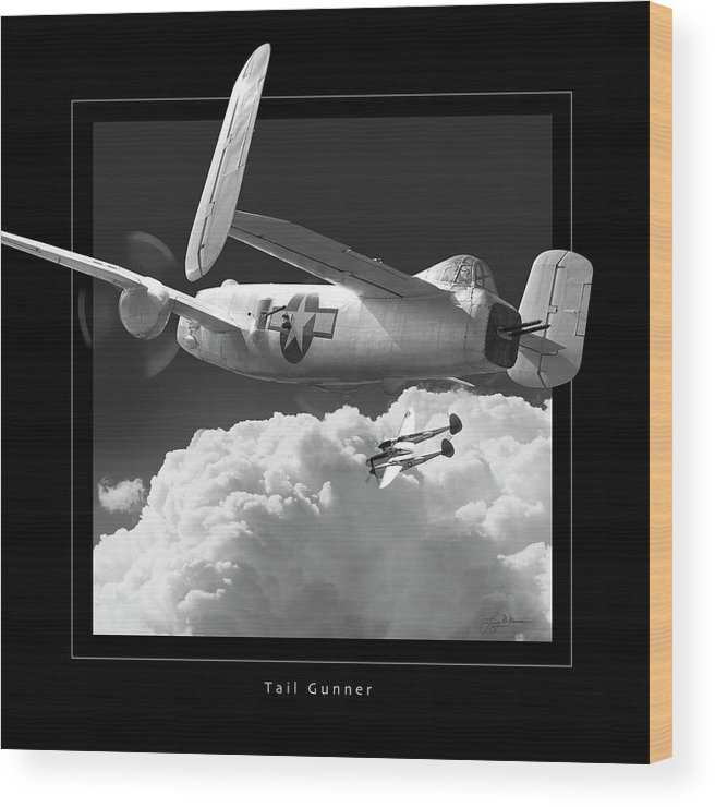 B-25 Mitchell Bomber Framed Prints Wood Print featuring the photograph Tail Gunner by Larry McManus