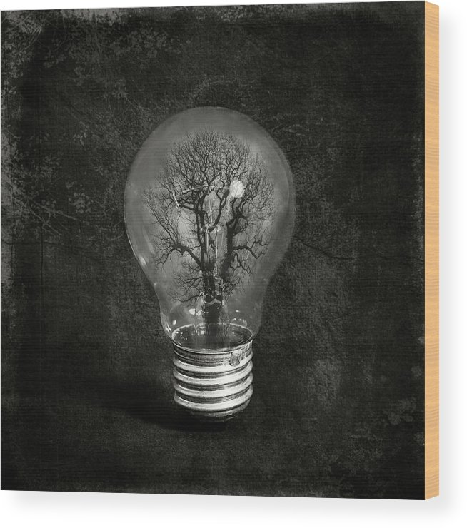 Tree Wood Print featuring the photograph The Tree by Igor Genovesi