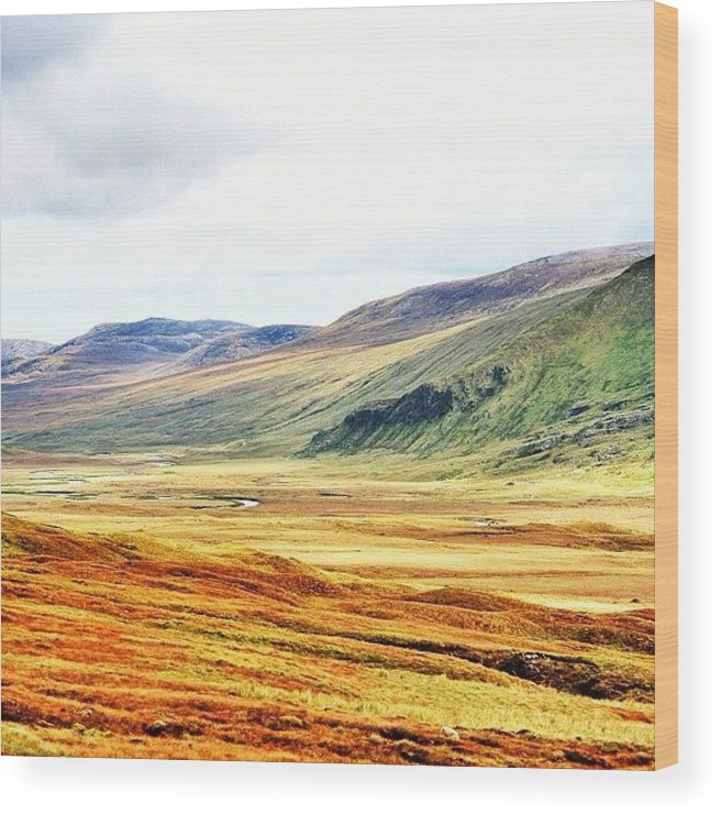 Outdoor Wood Print featuring the photograph The Highlands by Luisa Azzolini
