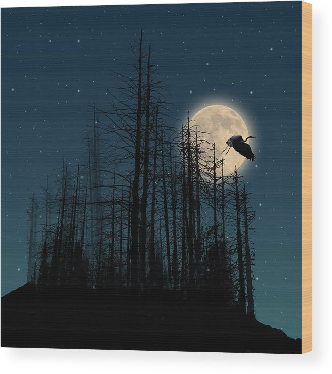 Trees Wood Print featuring the photograph 2115 by Peter Holme III