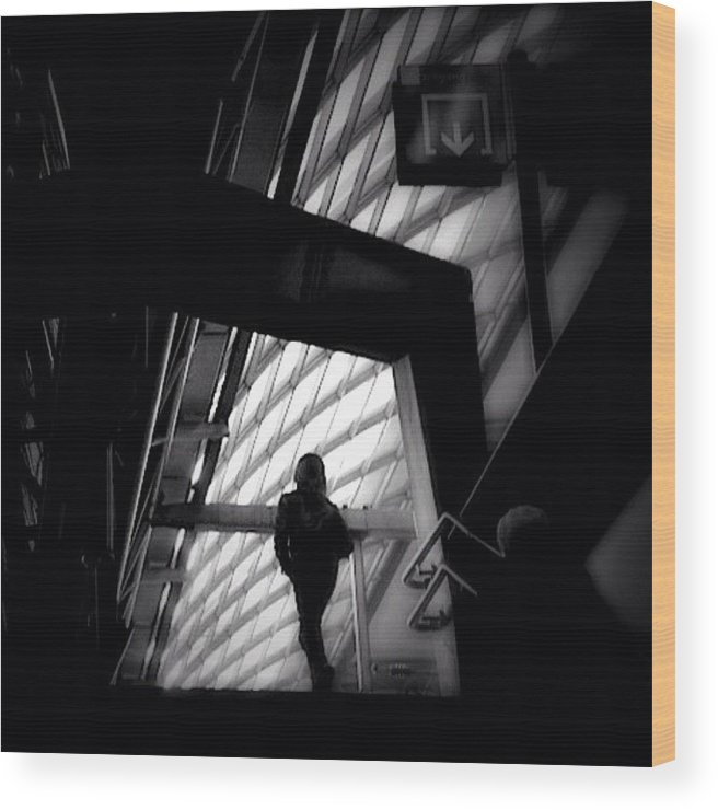 Igersams Wood Print featuring the photograph Caged Living - Concrete Jungle by Robbert Ter Weijden