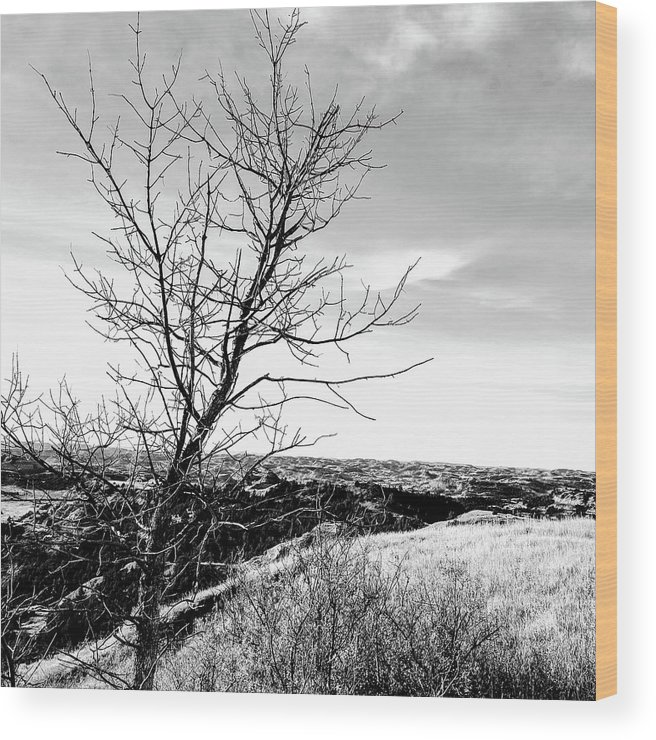 Rural Wood Print featuring the photograph Landscape by Justin Parkinson