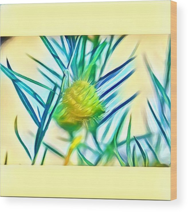 Wood Print featuring the digital art Swan Plant by Melinda Sullivan Image and Design