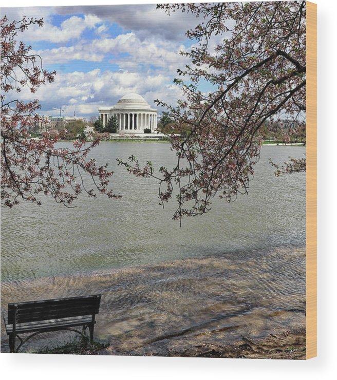 Washington Dc Usa Wood Print featuring the photograph Washington Dc Usa by Paul James Bannerman