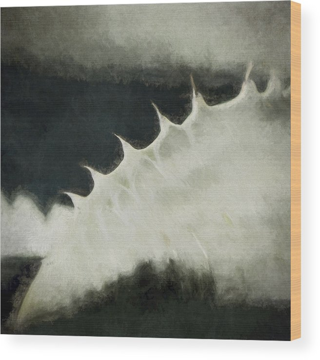 Agave Wood Print featuring the photograph Agave Impression Two by Carol Leigh
