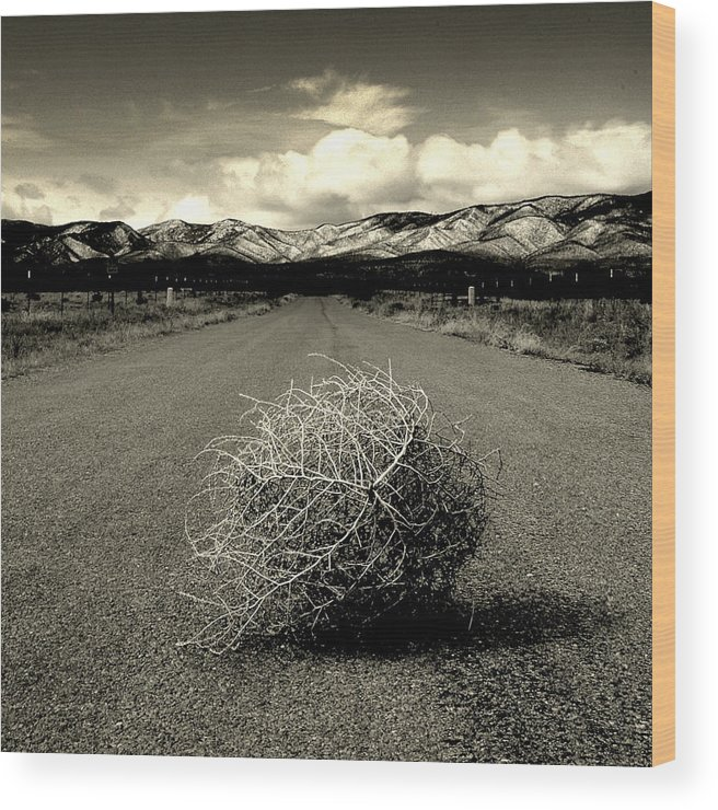 Tumbleweed Wood Print featuring the photograph Blowin In The Wind.. by Al Swasey
