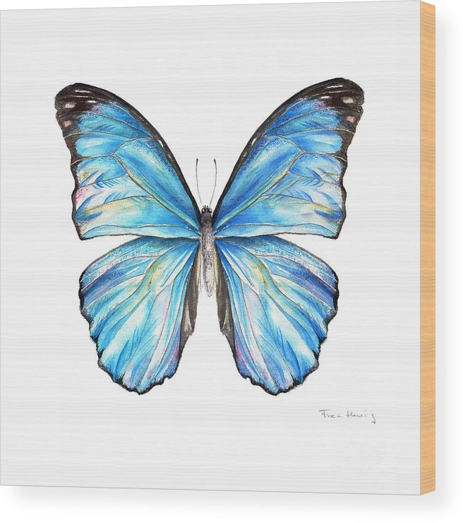 Butterfly Wood Print featuring the painting Blue Morpho Butterfly by Fran Henig