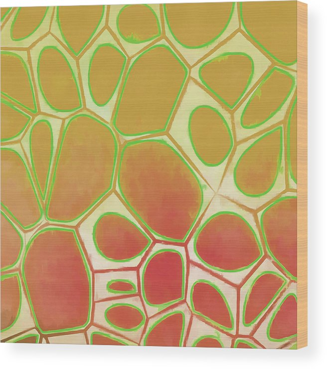 Painting Wood Print featuring the painting Cells Abstract Five by Edward Fielding