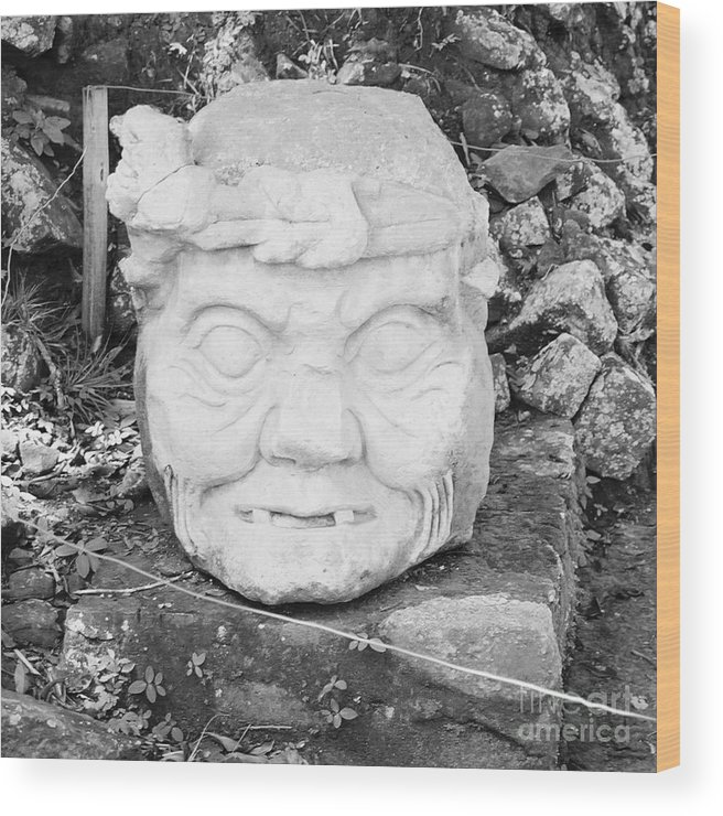 Travel Wood Print featuring the photograph Copan Ruins Artifacts IIi by Trude Janssen