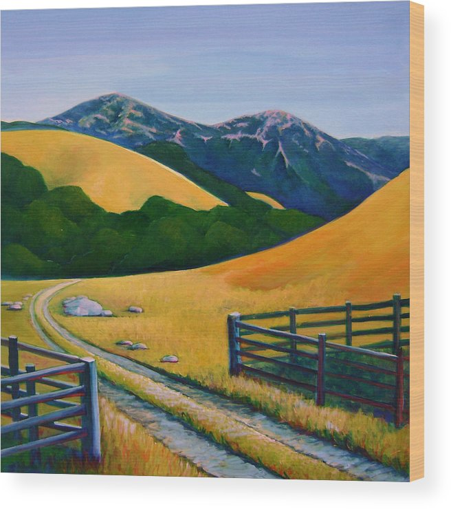 Landscape Wood Print featuring the painting Diablo View by Stephanie Maclean
