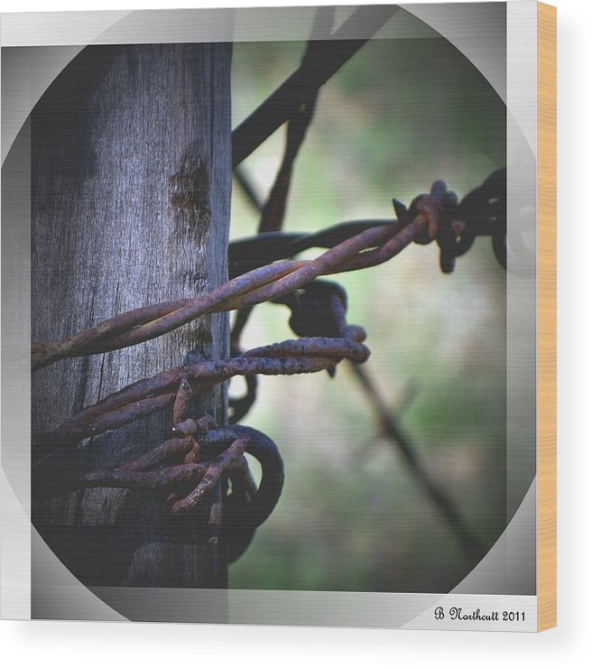 Barbed Wood Print featuring the photograph Don't Fence Me In by Betty Northcutt