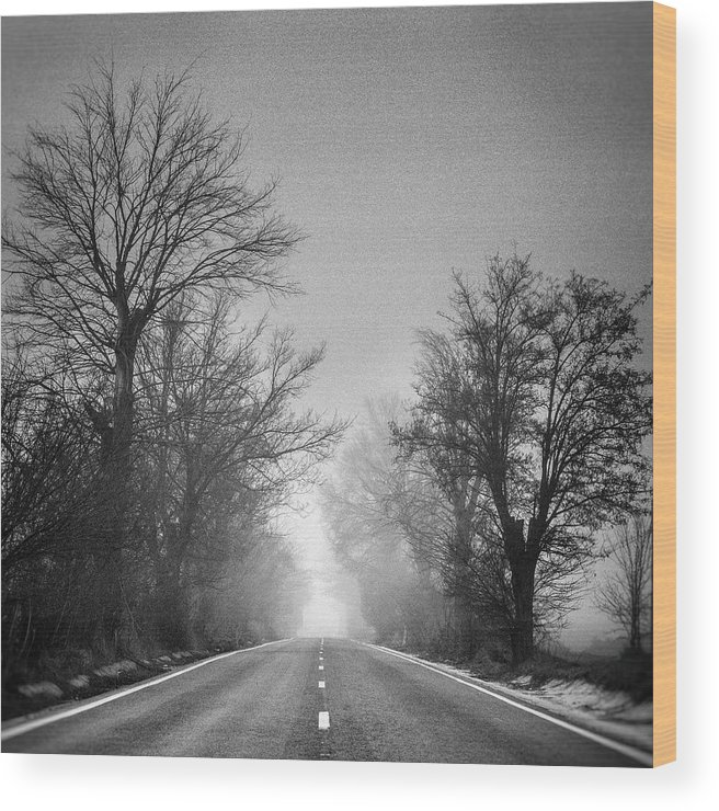 Retro Wood Print featuring the photograph Follow Your Dreams  Monochrome by Guido Montanes Castillo