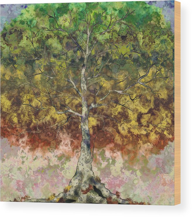 Sycamore Wood Print featuring the digital art Great Sycamore by Gae Helton