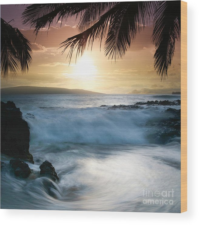 Beach Wood Print featuring the photograph Integrations by Sharon Mau