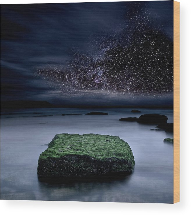 Night Wood Print featuring the photograph Into The Shadows by Jorge Maia