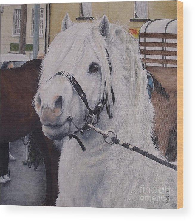 Portrait Wood Print featuring the painting Little Stallion-glin Fair by Pauline Sharp
