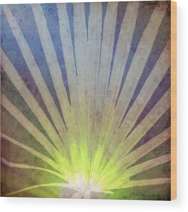Landscape Wood Print featuring the photograph Palm Frond Light by Marvin Spates