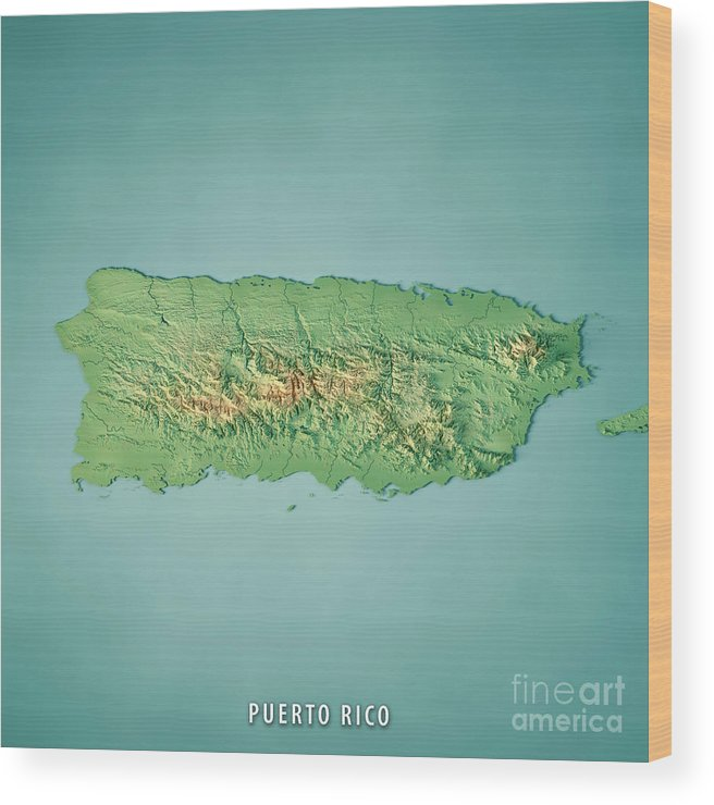 Puerto Rico 3d Render Topographic Map Wood Print by Frank Ramspott