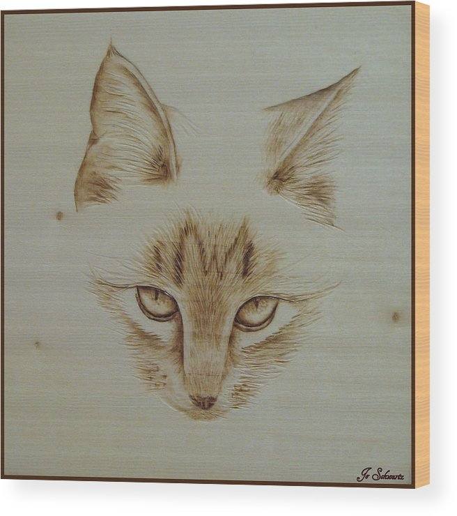 Kitty Wood Print featuring the pyrography Purrfect Study by Jo Schwartz