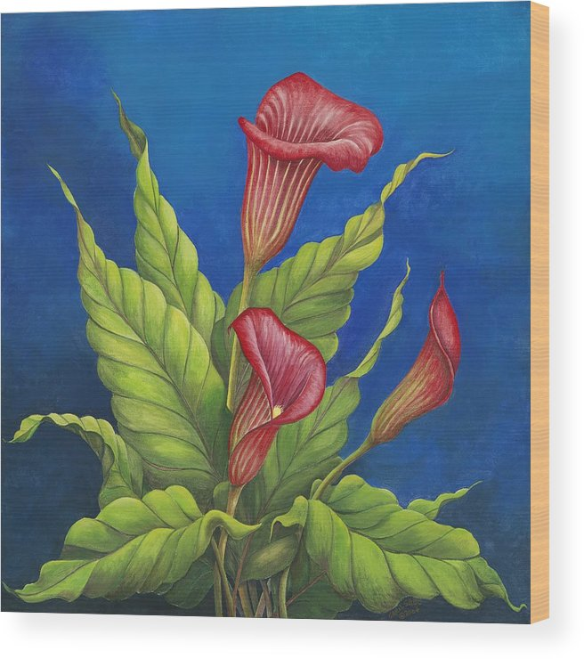Red Calla Lillies On Blue Background Wood Print featuring the painting Red Calla Lillies by Carol Sabo