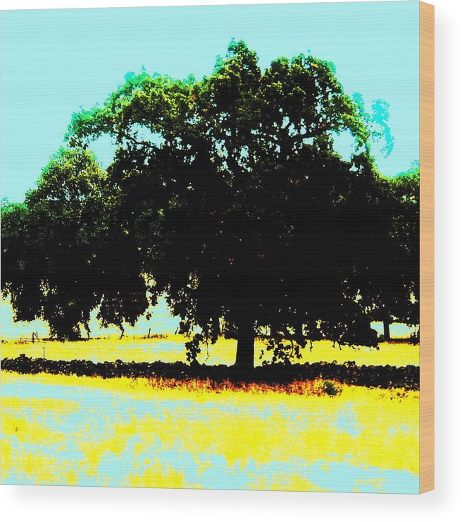 Trees Wood Print featuring the painting Solitude by Tim Tanis