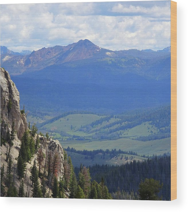 Idaho Wood Print featuring the photograph Stanley Basin by Dan Dixon