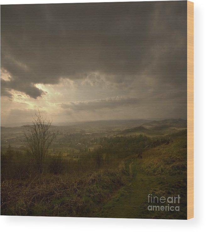 Malvern Wood Print featuring the photograph The Malvern Hills by Angel Ciesniarska