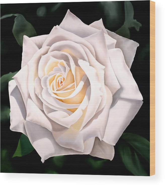 Flower Wood Print featuring the painting White Rose by Ora Sorensen