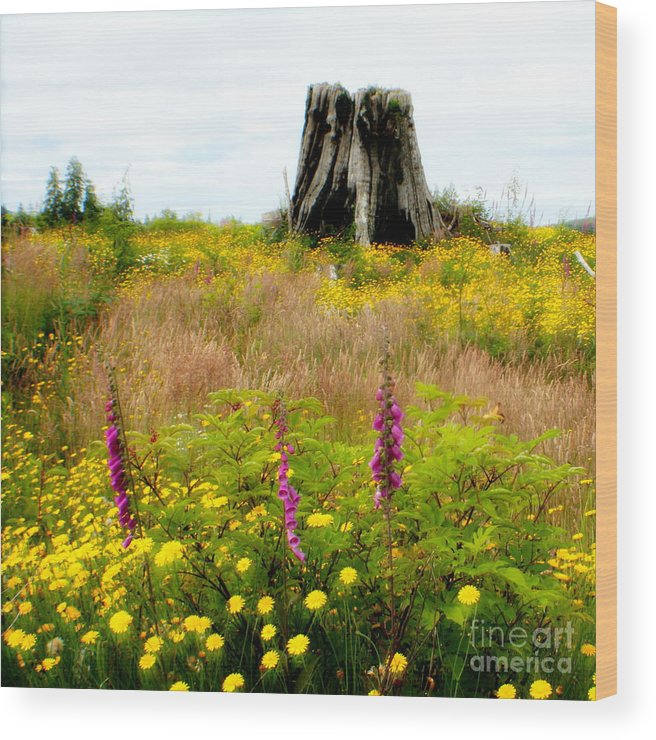 Stump Wood Print featuring the photograph Wildflowers by Idaho Scenic Images Linda Lantzy
