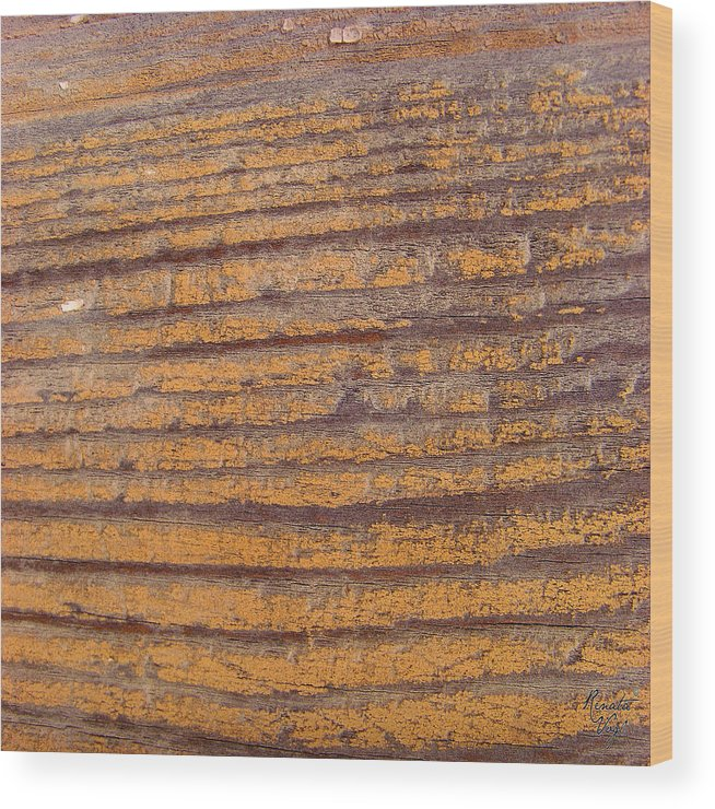Wood Wood Print featuring the photograph Wood No 2 by Renata Vogl