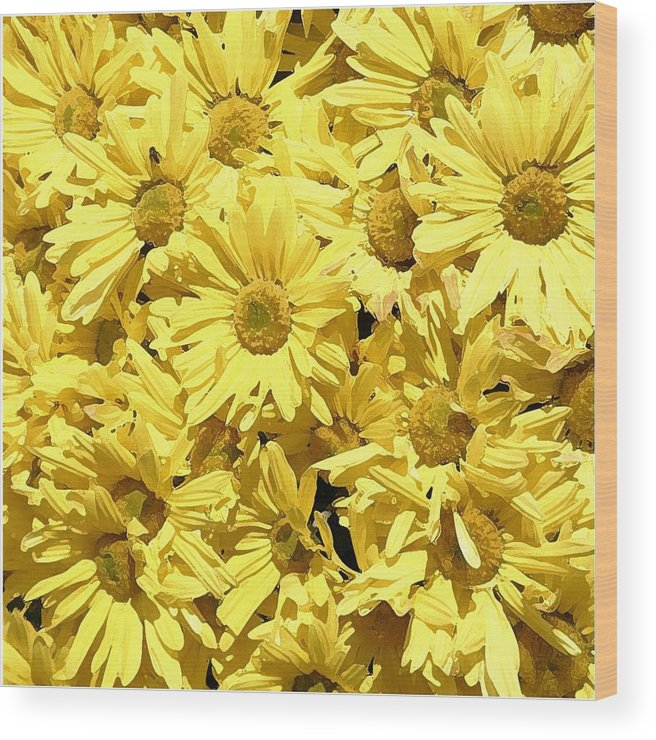 Yellow Wood Print featuring the photograph Yellow by Alan Skonieczny