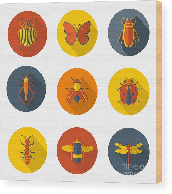 Symbol Wood Print featuring the digital art Insects Flat Icons by Sly Raccoon