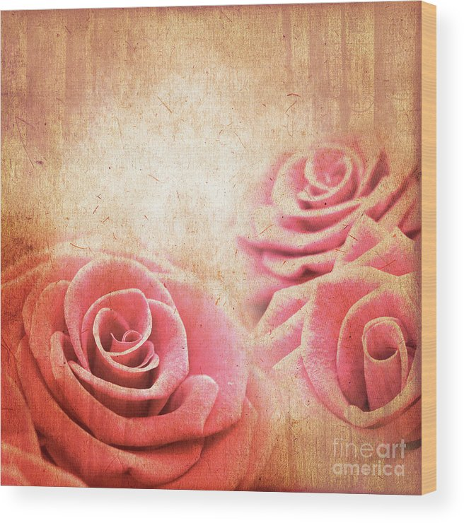 Rose Wood Print featuring the photograph Vintage Roses by Delphimages Photo Creations