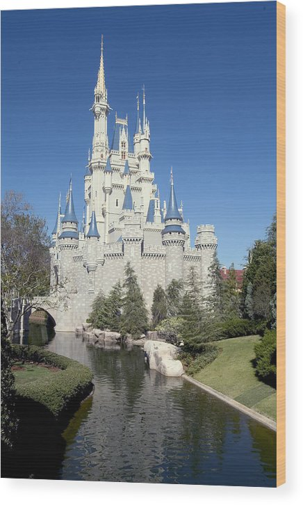 Cinderella Castle Wood Print featuring the photograph Cinderella Castle Reflections by Charles Ridgway