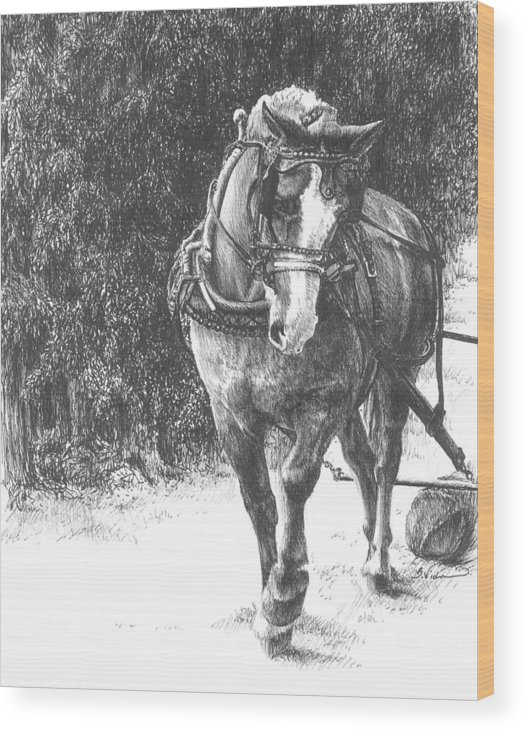 Horse Wood Print featuring the drawing Powerful Grace by Barbara Widmann