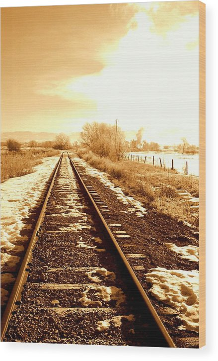 Railroad Wood Print featuring the photograph Tracks by Caroline Clark