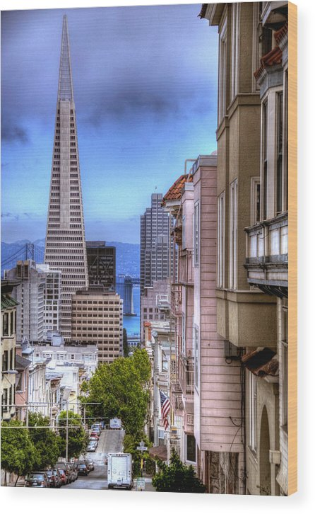 View Of The Trans America Building Wood Print featuring the photograph San Francisco by Anthony Citro