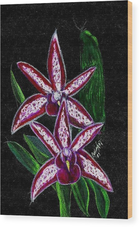 Flower Orchid Floral Reddish Purplish Wood Print featuring the print Look At Me Against The Twinkling Sky by Carliss Mora