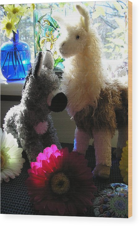 Stuffed Animals Wood Print featuring the photograph Donkey Joti And Dali Llama by Christina Gardner
