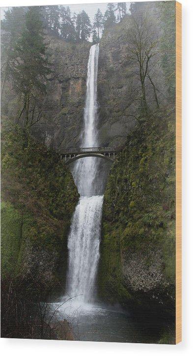 Multnomah Falls Wood Print featuring the photograph Multnomah Falls by Betty Depee