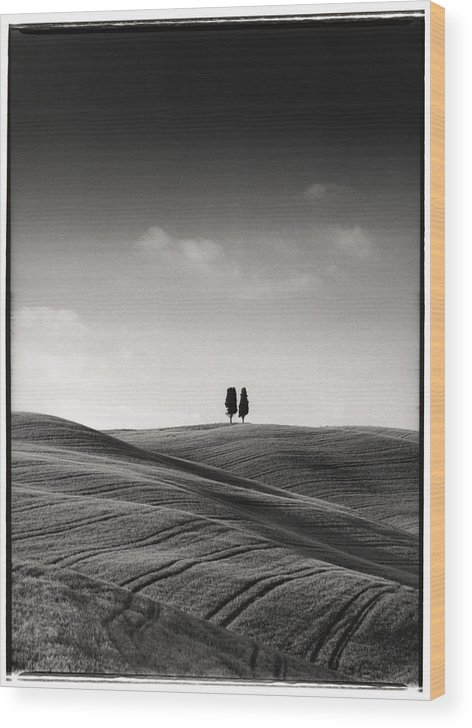 Tuscany Wood Print featuring the photograph Tuscany Twin Cypresses by Michael Hudson