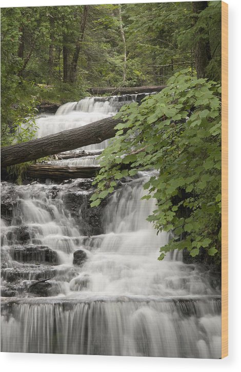 Wagner Falls Wood Print featuring the photograph Upper Wagner Falls by Cindy Lindow