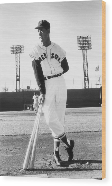 Ted Williams - Baseball Player Wood Print featuring the photograph Ted Williams by Slim Aarons