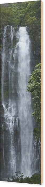 Wailua Falls Wood Print featuring the photograph Wailua Falls by Richard Henne