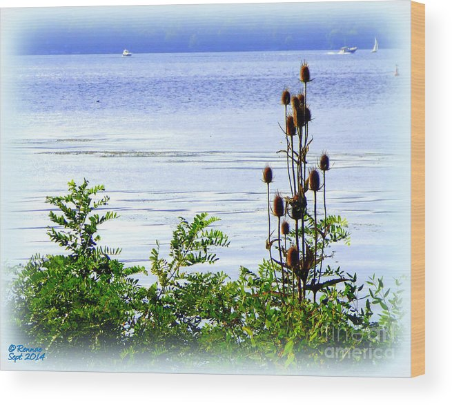 Waterscape Wood Print featuring the photograph Waters Edge by Rennae Christman