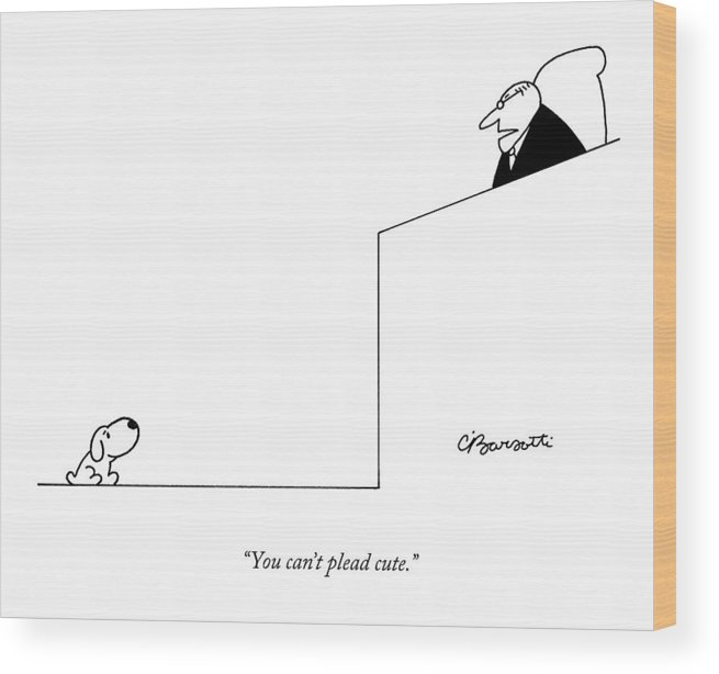Dogs Wood Print featuring the drawing You Can't Plead Cute by Charles Barsotti